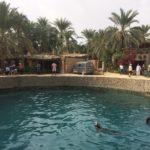 Piscina di Cleopatra, Acqua Sulfurea, Siwa, Egitto