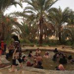 Palme, Bir Wahed, Sorgente d'acqua termale, Deserto Sahara, Siwa, Egitto