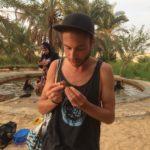 Datteri e Palme, Bir Wahed, Sorgente d'acqua termale, Deserto Sahara, Siwa, Egitto