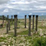 Colonne di Pietra Lavica Nera, Rovine Archeologiche Romane, Foro, Irbid, Umm Qays, Giordania