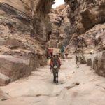 Asino, Petra, Parco Archeologico, Valle Rocciosa, Hiking, Giordania